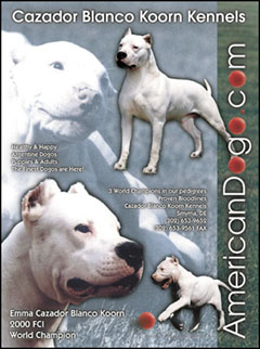 Koorn Kennel Ad